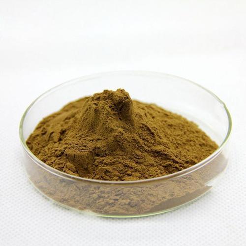 Bacopa Monnieri Extract (Brahmi)