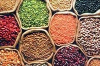 Nutritious Top Quality Pulses