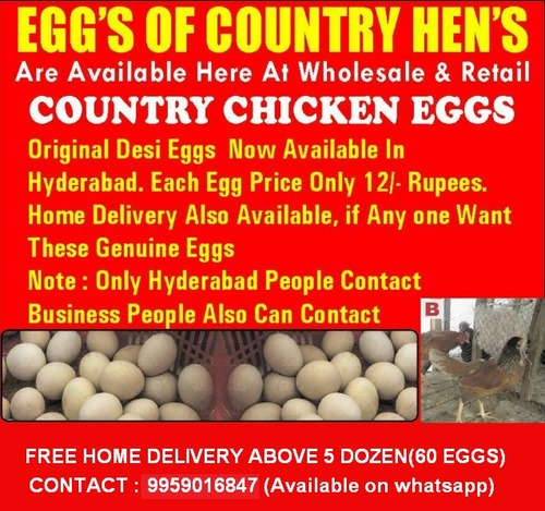 Eggs In Hyderabad, Eggs Dealers & Traders In Hyderabad