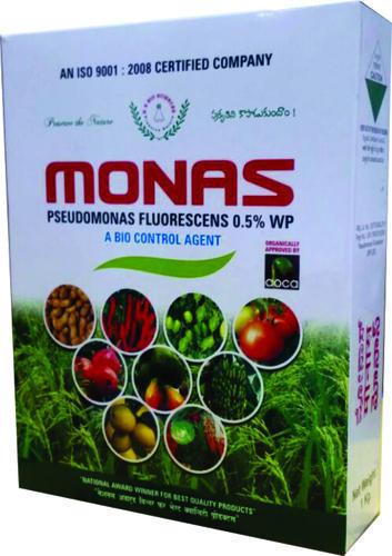 Top Quality Pseudomonas Fluorescens