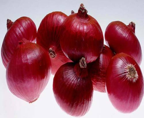 Medium Organic Red Onion