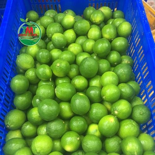 Farm Fresh Seedless Lime