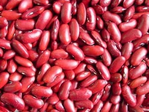 Rich Nutritional Value Red Kidney Beans