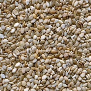 Superior Quality Natural Sesbania Seed