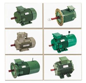High Efficiency Electric Motors