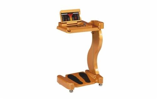 Laser Therapeutic Device - Q700