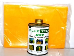 Glue for Insect Trap