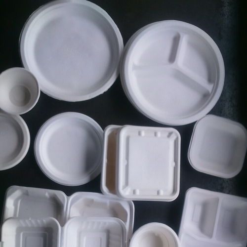 100% Biodegradable Disposable Plates