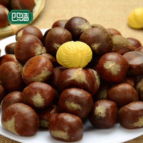 Rich Taste Organic Fresh Chestnut