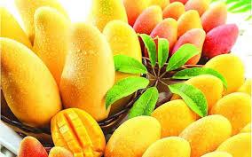 Fresh Juicy Tasty Mango