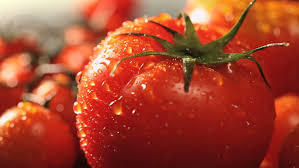 Organic Fresh Red Tomato