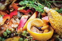 Food Industry Waste Composting Culture