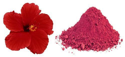 Hibiscus Powder Hibiscus Powder Manufacturers Suppliers Dealers