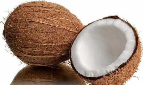 Indian Farm Fresh Coconuts
