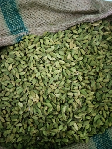Fresh Indian Green Cardamom