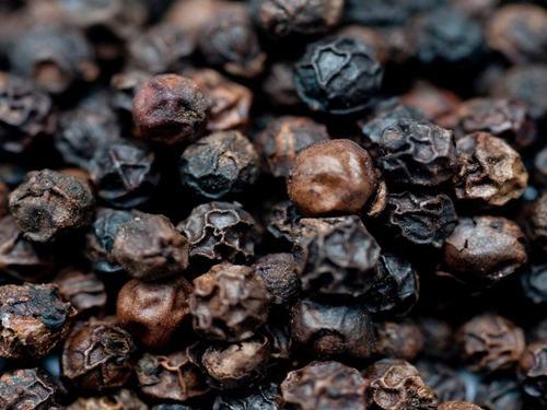 Black Pepper 550GL/ 500GL 570G/L
