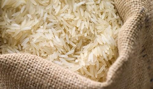 Impurity Free Basmati Rice