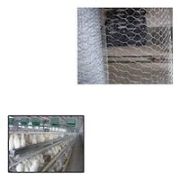 Rust Resistance Chicken Mesh For Poultry Cage