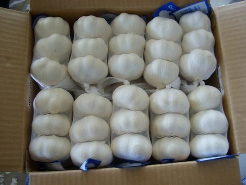 100% Farm Fresh Garlic