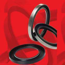 Industrial Rotary Shaft Seals