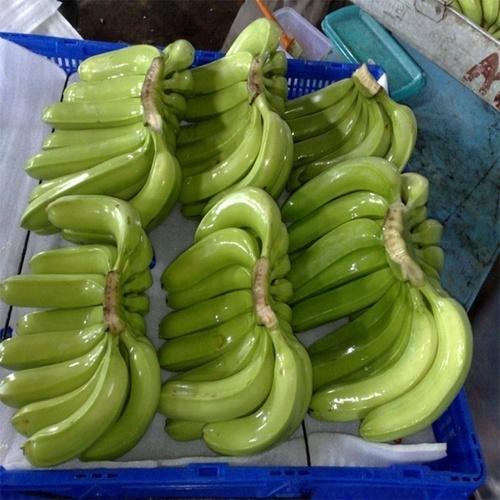 Farm Fresh Cavendish Banana