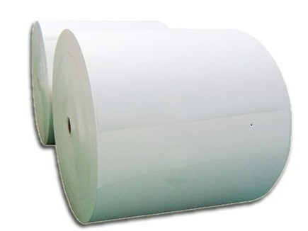 White Color Poly Coated Paper