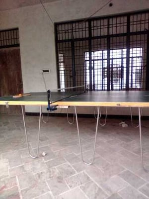 Solid Table Tennis Tables