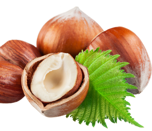 Blanched Hazelnuts and Hazelnuts In-shel