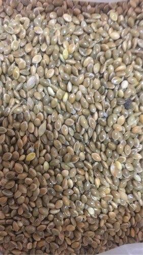 Indian Organic Proso Millet