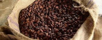 Impurity Free Cocoa Beans
