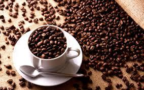 Pure Natural Coffee Beans