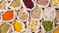 Highly Nutritional Organic Pulses
