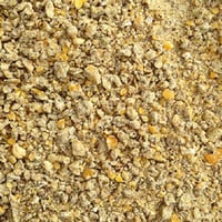 Organic Maize Cattle Feed