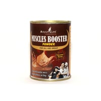 Ayurcure Mucles Booster Powder For All Age Group Chocolate Flavour