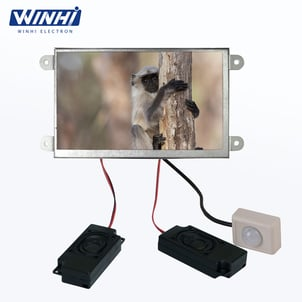7 Inch Metal Shell Open Frame Motion Sensor Car Flac Audio Player LCD Video Advertising Monitor