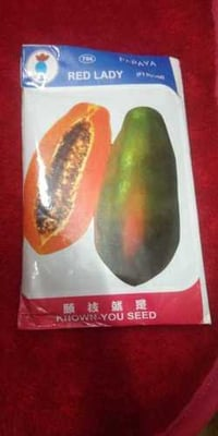 Red Lady F1 Hybrid 786 Papaya Taiwan Seeds