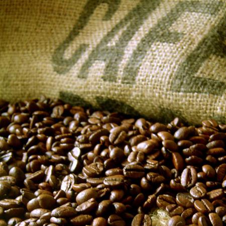 Common Robusta, Arabica Green Coffee Beans