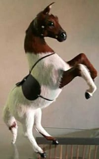 Home Decor Jumping Horse Toys