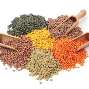 Quality Red, Green, Yellow Lentils