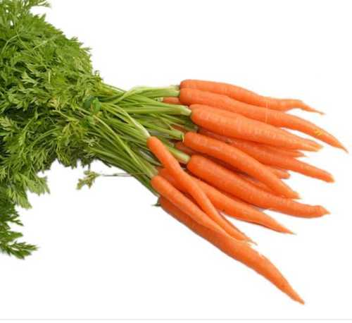 Ooty Red Carrots