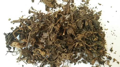 Dried Patchouli Leaves