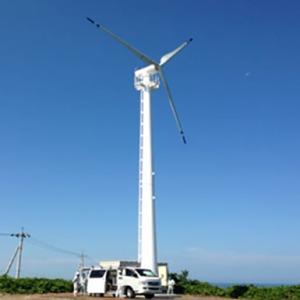 Industrial Wind Turbine Swt-50kw