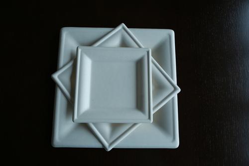 Bagasse Plate