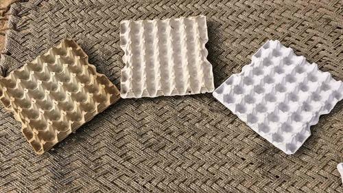 White Disposable Paper Egg Trays (30 Eggs)