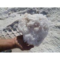 Raw Salt For Industrial Uses