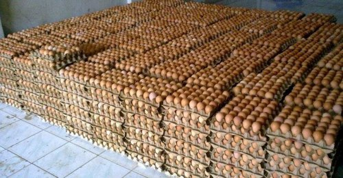 Fresh Desi Brown Eggs Egg Origin: Chicken