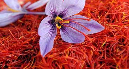 Unmatched Quality Iranian Saffron