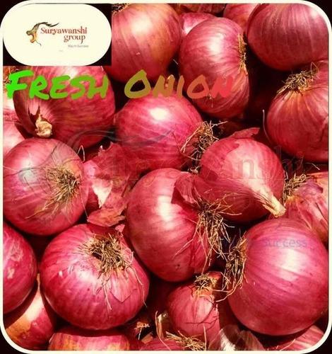 Fresh Onion In Surat, Fresh Onion Dealers & Traders In Surat, Gujarat
