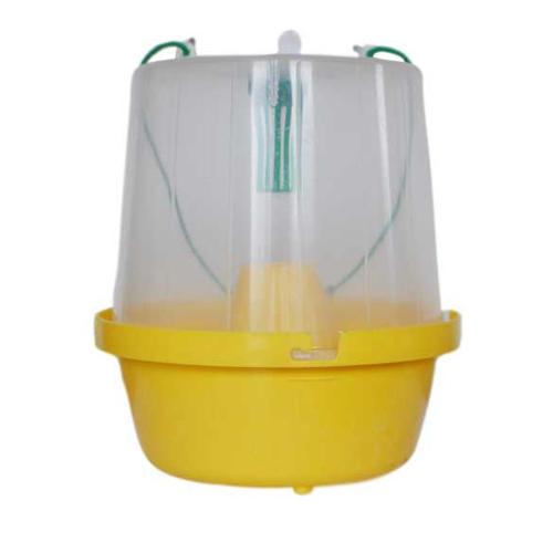 Effective Pheromone Water Trap