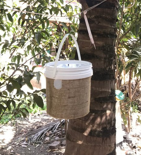 Highly Durable Bucket and RPW Trap